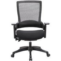 Molet Task Exec Mesh Desk Chair with Height Adjusting Arms