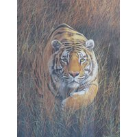Fine Gilt Framed Bengal Tiger Ltd Ed Print Of The Original Painting Bengal By The Artist Simon Coombes Pencil Signed - Artist Gifts