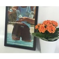 Original Vintage 1975 Bacardi Rum Shorts Advertisement  Framed A4 Brewinalia Drinks Alcohol - Bacardi Gifts