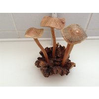 Hand Carved Multi Mushroom Set of 4.... Carved From Parasite Woods.... - Mushroom Gifts