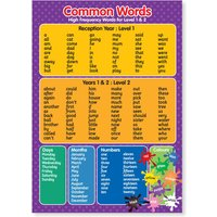 A3 Laminated Common Key/Words Level 1  2 Educational Poster - Educational Gifts