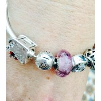 Precious Ashes Pet Cremation Jewellery  Pandora Style Silver Lined Bead - Pandora Gifts