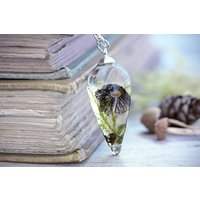 Real Mushroom Necklace Toadstool Pendant Wild Fungi Jewelry Natural Moss Terrarium Eco Friendly Resin Woodland Forest Teardrop FREE SHIPPING - Mushroom Gifts