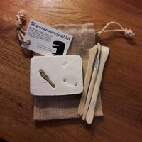 Digyourownfossilkit! Comes with REAL JURASSIC FOSSIL  plus access to learning and fossil hunting tips via educational online portal. - Educational Gifts