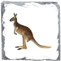 Kangaroo Design Heavy Slate Gift Coaster - Kangaroo Gifts