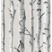 Wallpops Birch tree Grey Peel & stick wallpaper (L)5500mm (W)520mm