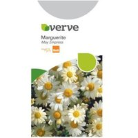 Verve Marguerite Seeds May Empress Mix