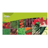 Verve Veg Collection Seeds