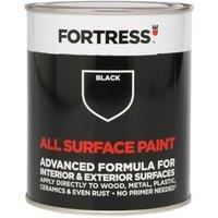 Fortress Black Matt Multi-surface paint 250ml