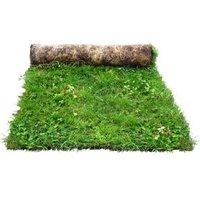 Meadowmat Wildflower turf 20m² Pack