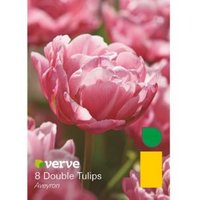 Double tulip Aveyron Bulbs