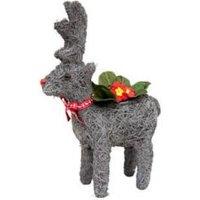 Festive Reindeer Planter