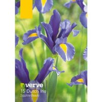 Dutch Iris Sapphire Beauty Bulbs  Pack of 15
