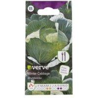 Verve Brunswicka winter cabbage Seed