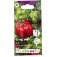Verve Scotch Bonnet Chilli Seed