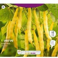Verve Złota Saxa Seed