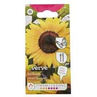 Verve Dwarf Sunspot sunflower Seed