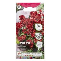 Verve Wallflower Red Bedder Seed