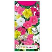 Verve Petunia pastel F1 Seed
