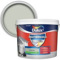 Dulux Weathershield Frosted lake Smooth Matt Masonry paint 1