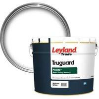 Leyland Trade Pliolite Pure brilliant white Smooth Matt Maso
