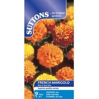 Suttons Marigold French Seeds  Boy Mix