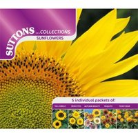 Suttons Sunflower Seeds  Collection Mix
