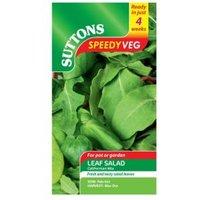 Suttons Speedy Veg Leaf Salad Seeds Californian Mix