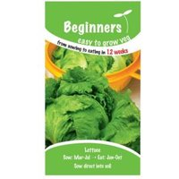 Suttons Beginners Lettuce Seeds  Webbs Wonderful Mix