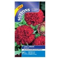 Suttons Gaillardia Seeds  Red Plume Mix