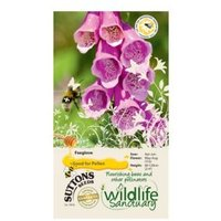Suttons Wildlife Sanctuary Foxglove Seeds
