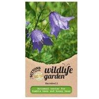 Suttons Harebell Seeds  Wildflower