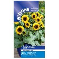 Suttons Sunflower Seeds  Waooh!