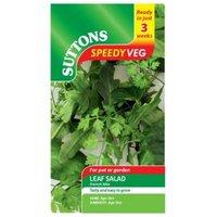 Suttons Speedy Veg Leaf Salad Seeds  French Mix