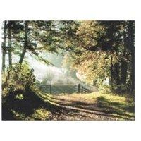 Forest Walk Brown & Green Canvas Art (W)800mm (H)600mm