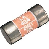 Wylex 40A Consumer unit fuse
