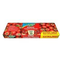 Westland Gro-Sure Tomato Grow bag 60L