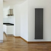 Seren Égalrad Type 10 single Designer panel radiator Gun metal  (H)1800mm (W)578mm