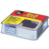 The Big Cheese Rodent bait station Pack of 2