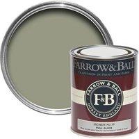 Farrow & Ball Lichen no.19 Gloss paint 0.75L