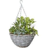 Assorted flower Wicker Hanging basket 30cm diameter