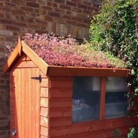 ROOFTRADE Multicolour Living Roof (L)4M (W)1000mm
