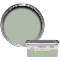 Colours Standard Cut Grass Silk Emulsion Paint 2.5L