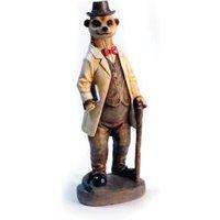 Meerkat Doctor Garden Ornament