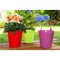 Colourful flower pots, set of 3