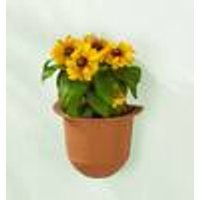 Self Watering plant pot, for walls or window ledges