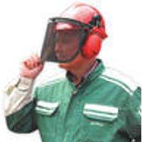 Forestry Helmet
