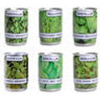 Herbs in cans, set of 6