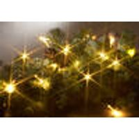 LED fairy lights with 20 warm white LEDs, indoor use