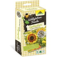 Image of Wildgärtner Gartenstars - Saatgut
